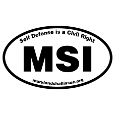 MSI Oval Sticker